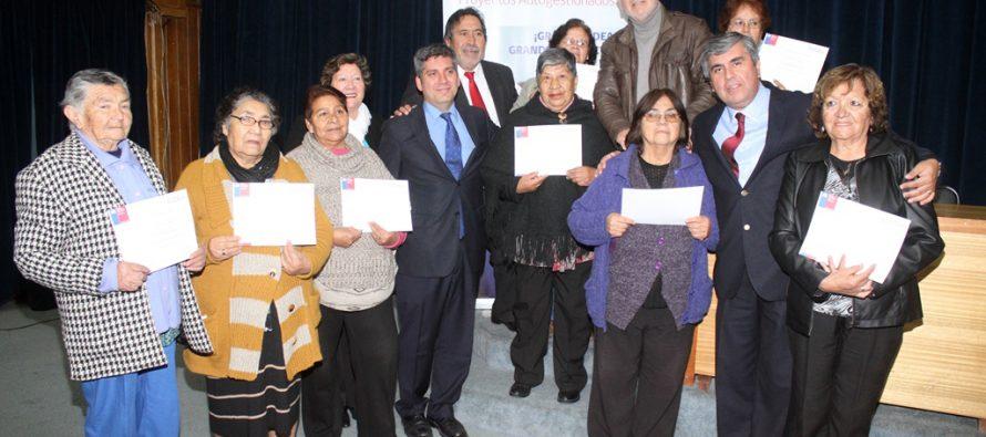 Fondo del Adulto Mayor financia  un total de 14 proyectos en la comuna de Vicuña