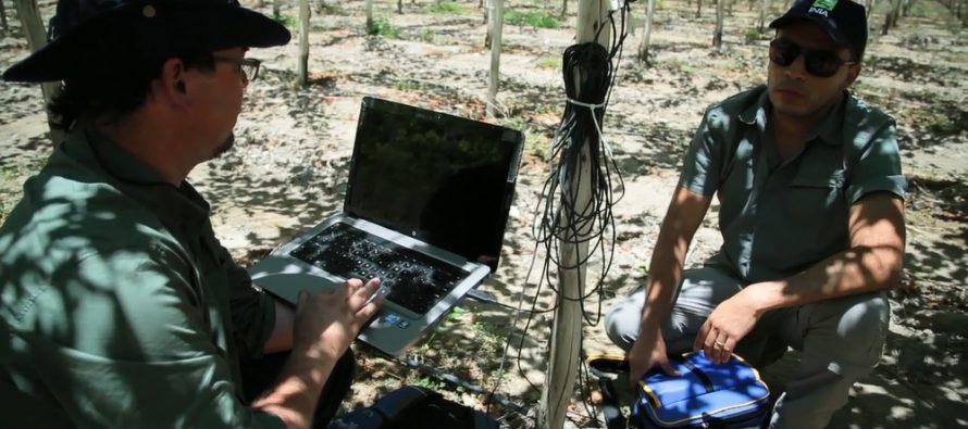 Utilizarán imágenes satelitales para optimizar uso del agua en zonas agrícolas