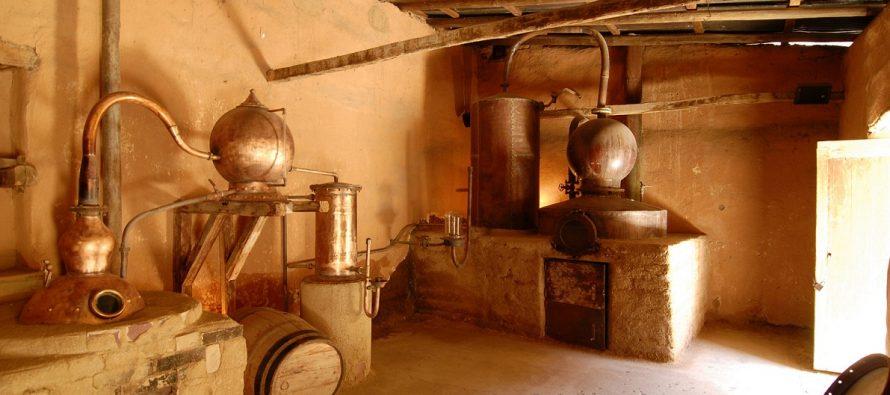 La Destilería Pisco Mistral en Pisco Elqui, un panorama para disfrutar en familia en estas Fiestas Patrias