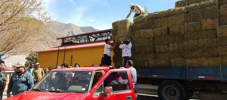 Autoridades hicieron entrega de forraje a crianceros de Paihuano