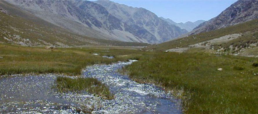 Medio Ambiente desarrolla plan de manejo en Santuario de la Naturaleza del Estero Derecho