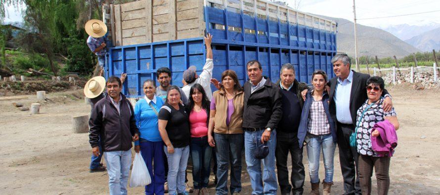 Crianceros de Vicuña ayudan a restablecer fuente laboral a vecino de Puerto Aldea