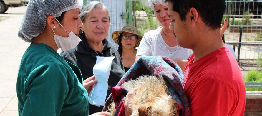 Vicuña y Paihuano se unen al Programa de Tenencia Responsable de Mascotas