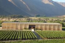 Valle del Elqui: la frontera norte de los vinos en Chile