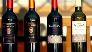 falernia-800x452