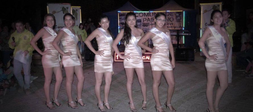 Carnaval del Sol culmina este fin de semana en Paihuano