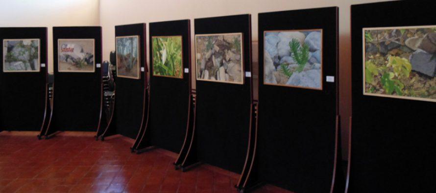 En Montegrande se está desarrollando la exposición de pinturas de Gloria Silva Riveros