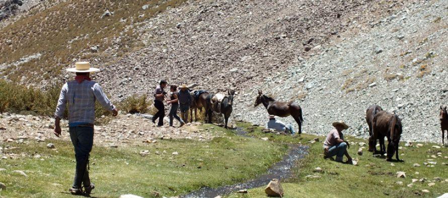 Desarrollan plan de manejo para Santuario de la Naturaleza en el Valle de Elqui