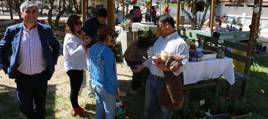 Parque Los Pimientos congregará la II Feria Rural Campesina de Vicuña