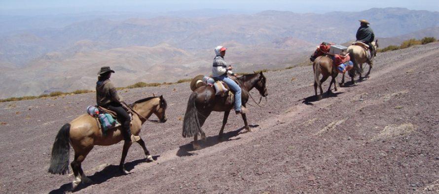 Reservas en alojamiento llegan a 85% en Paihuano y 70% en Vicuña en Semana Santa