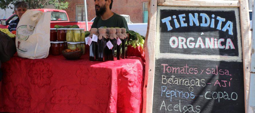 Buscan potenciar los productos locales con la Feria Campesina de Vicuña en Semana Santa