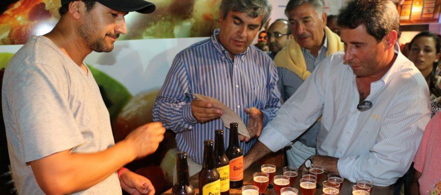 Vicuña incentiva a los sanjuaninos a conocer los atractivos del Valle del Elqui