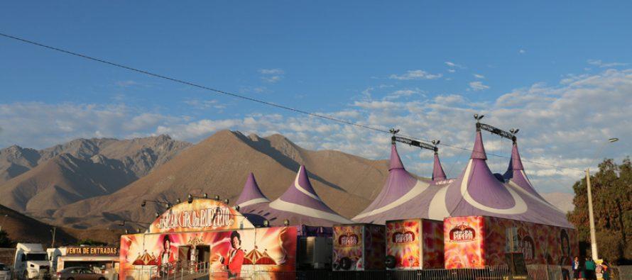 El Gran Circo de Ruperto se presenta este fin de semana en Vicuña
