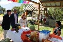 Positiva evaluación para la Primera Feria Rural Campesina realizada en Vicuña