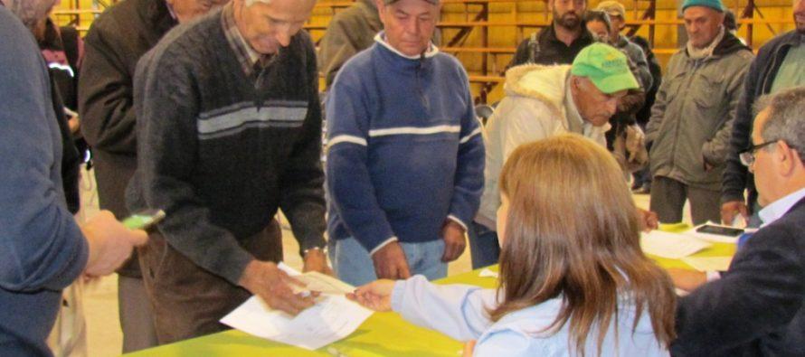 Gobierno apoya el emprendimiento de 1.163 pequeños agricultores de Elqui