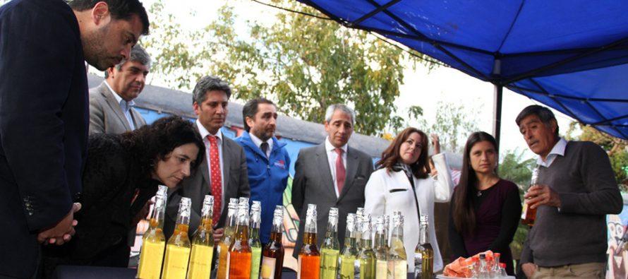 Barrio Mistraliano de Vicuña buscará potenciar el astro turismo y las tradiciones elquinas