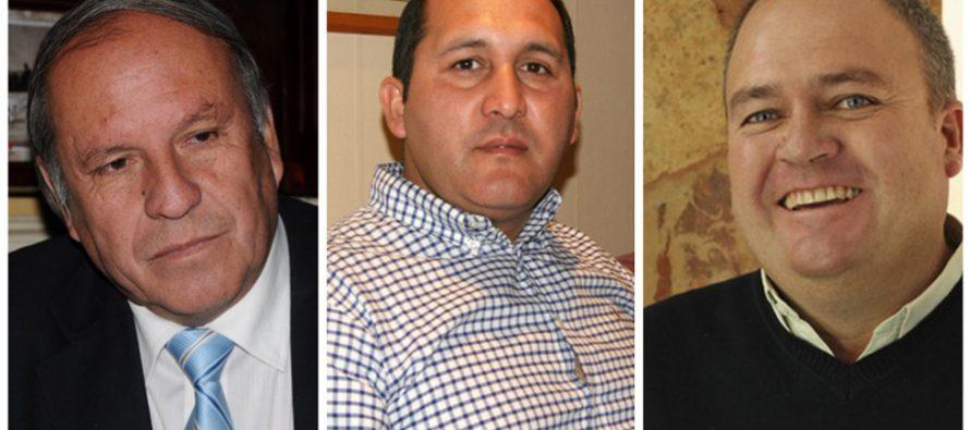 Chile Vamos elige su representante para la alcaldía de Vicuña a través de las primarias