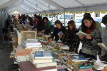 Fondo Sectorial: II Feria del Libro de Vicuña se adjudica más de 24 millones de pesos para su realización