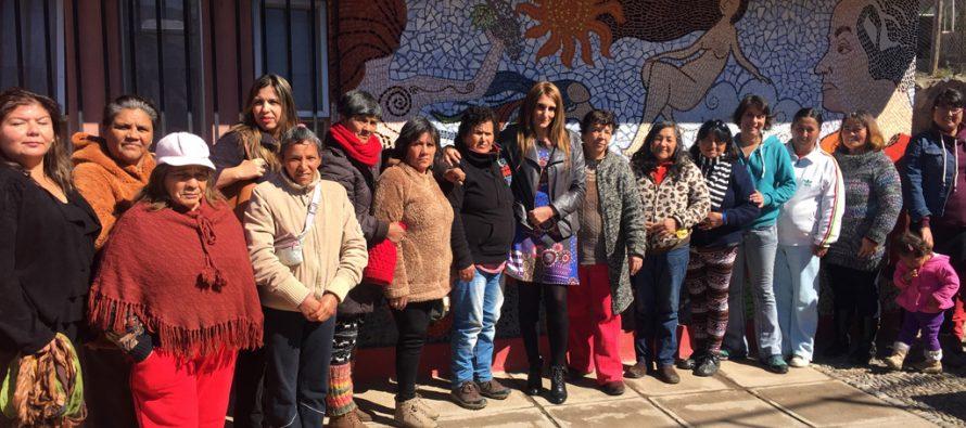Mujeres temporeras de Vicuña celebran el Día Nacional de las Trabajadoras Agrícolas