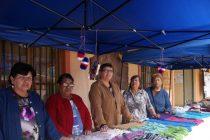 Club de Adulto mayor de Paihuano exhibió sus trabajos en exposición anual