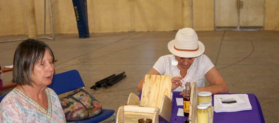 Pisco Elqui fue el epicentro de la segunda versión del Festival HOMA