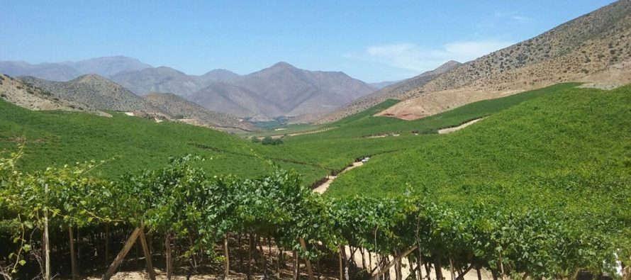 Agricultores enfrentan con optimismo la temporada agrícola 2016-2017
