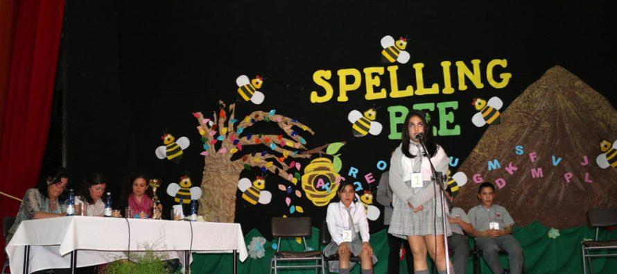 """Vicuña tuvo su segundo concurso de deletreo en inglés """"Spelling Bee"""": aprender de manera entretenida y desafiante"""