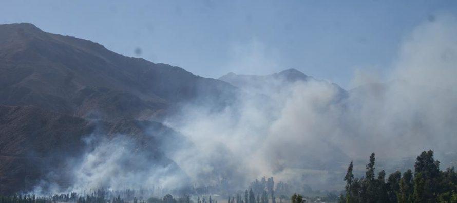 Incendio forestal consumió cinco hectáreas de vegetación en Paihuano