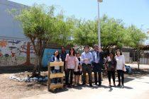 Vecinos de Vicuña recuperaron sitio eriazo para una nueva plaza en su barrio