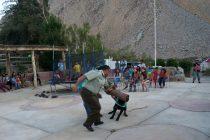 Perros policiales deleitaron a niños y adultos en la localidad de Cochiguaz