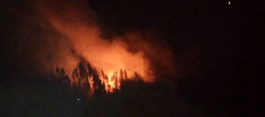 Incendio provocó Alerta Amarilla en localidad de Quilacán a un costado de la Ruta 41CH
