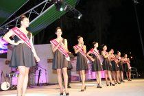 Cantantes locales y candidatas a reina se presentaron en la Noche del Artista Vicuñense