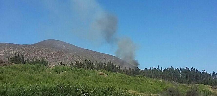 Cuatro focos de incendios forestales en sector rural de La Serena