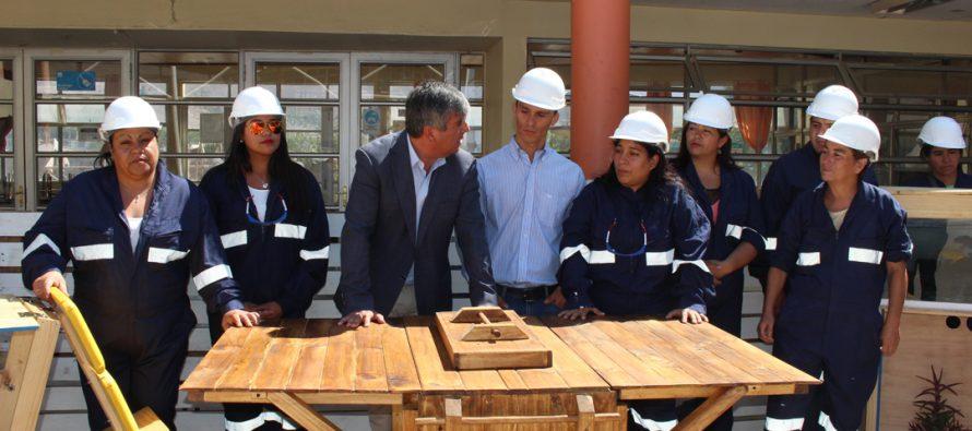 Mujeres elquinas se capacitan en la carpintería en la comuna de Vicuña