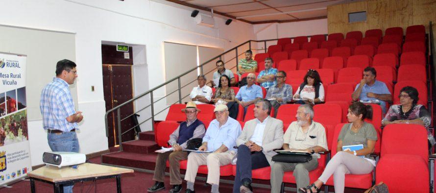 Mesa de Desarrollo Rural de Vicuña realizará documento para exponer sus conclusiones