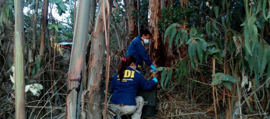 Joven que era buscado en el Valle del Elqui es encontrado por PDI con data de muerte 3 meses