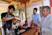 Buscan entregar valor agregado al pisco con creación de cocteles con frutas locales
