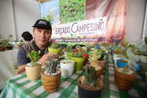 Jardines secos: La atractiva propuesta con  la que vecino de Las Ánimas cautiva en su emprendimiento