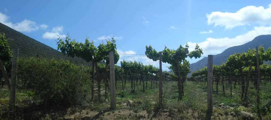 Región de Coquimbo se convierte en un referente en el ámbito de gestión de los recursos hídricos