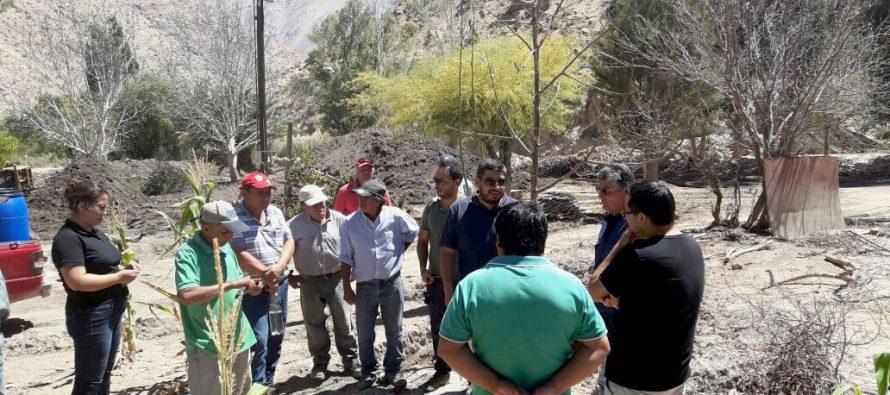 Agricultores de Vicuña analizan en terreno las principales especies frutales afectadas tras el aluvión en Atacama