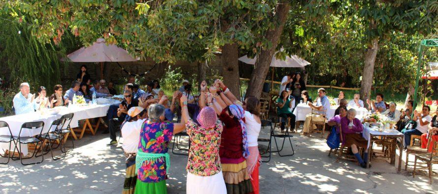 Adultos mayores de Vicuña inician actividades del programa Vínculos