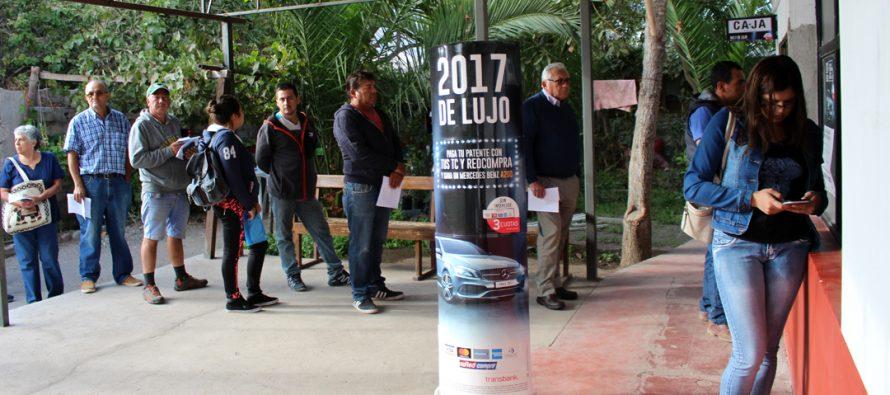 Comienza la penúltima semana para obtener el permiso de circulación en el municipio de Vicuña