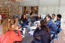 Con la presencia de carabineros y la PDI se concretó una nueva mesa de seguridad en Vicuña
