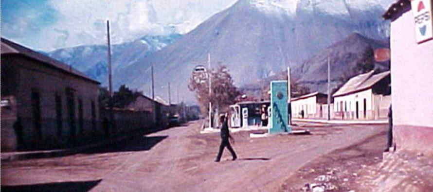 Avenida Las Delicias Vicuña