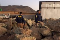 PDI detiene a tres personas por robo de minerales en el sector de El Pangue en la comuna de Vicuña