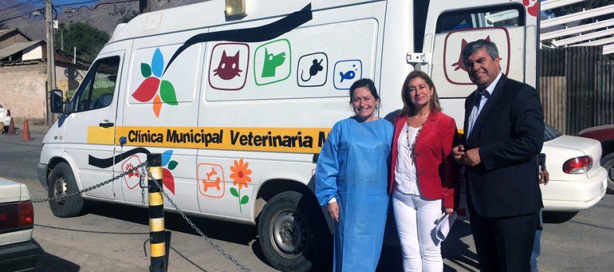 En Marquesa se realizará operativo para mascotas con Clínica Veterinaria Móvil
