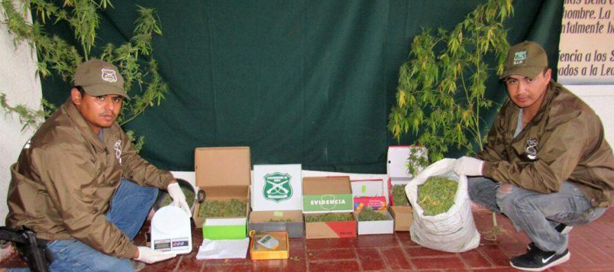 Detienen a hombre en El Tambo con dos kilos de marihuana elaborada