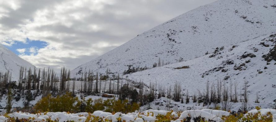 Ante pronóstico de temporal: Sociedad Agrícola del Norte llama a los agricultores a unirse y estar comunicados