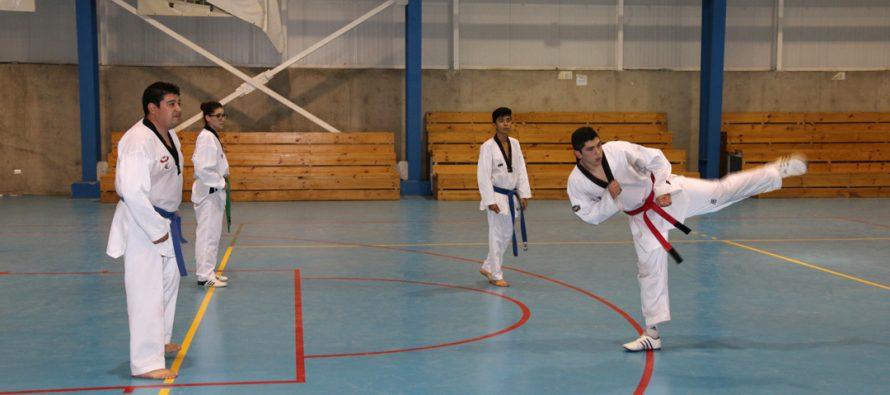 Taekwandistas de Vicuña se preparan para participar en el nacional de Chillan