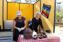 Ante representantes de pueblos originarios se dio inicio a la 1º Feria Costumbrista en Vicuña